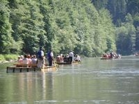 Gentle Rafting in Pieniny Mountains